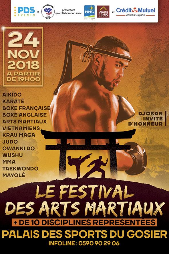 A6 festival arts martiaux 2018 web